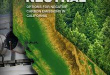 Photo of Waste biomass can help California meet net-zero goal