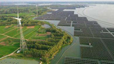 Photo of China's Coronavirus Lockdown Crushed Every Form Of Energy Generation Except Solar