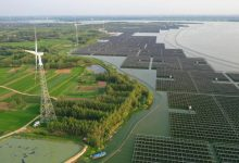 Photo of China's Coronavirus Lockdown Crushed Every Form Of Energy Generation Except Solar