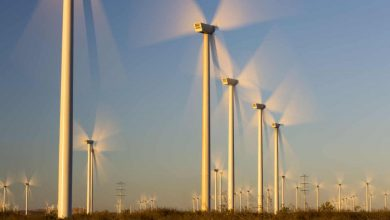 Photo of World's wind power capacity up by fifth after record year